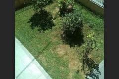 LA CHICCA - giardino